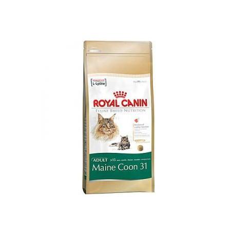 royal canin maine coon 31 10kg heimfutterservice. Black Bedroom Furniture Sets. Home Design Ideas
